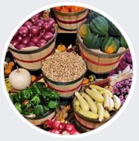 Nikk's Gourmet Salads & Treats
